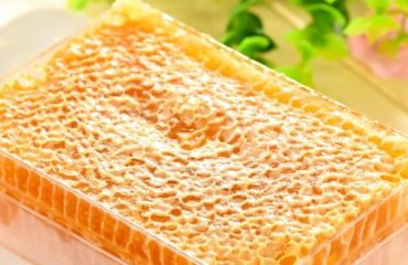 Where-To-Buy-Bee-Honeycomb