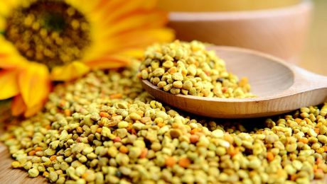 Learn more about bee pollen obtained from natural pollen.